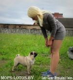 Love Game Hrustalnyi Lotos